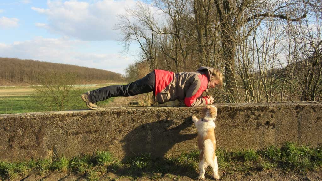 Yoga-Vimala-Planke-mit-Hund