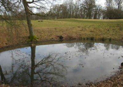Glauberg: Teich