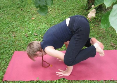 Yoga-Vimala-Krähe_169